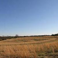 Commercial Land / Plot for Rent in Nashik