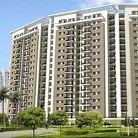 600 Sq Ft Flat For Sale in Nashik