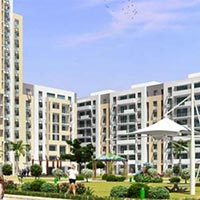 1 Bhk Flats for Sale in Canada Corner