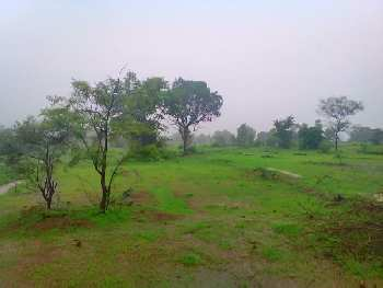 Residential Plot For Sale in Dalki , District  Jharsuguda, Odisha