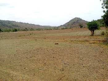 Industrial Cum Commercial Plot for Sale in Dalki, District Jharsuguda, Odisha