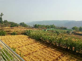 12 rooms farm house property for rent in Pachgani.