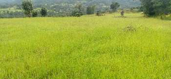 1 acre agri land fr sale at Bhor
