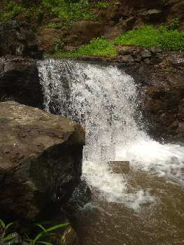 Farm house plot for sale with Live waterfall in project