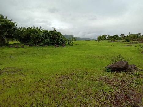ID 113/7 Single lot 100 acres for sale in ratnagiri District