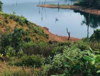 ID 113/44 Dam touch land for sale in Ratnagiri