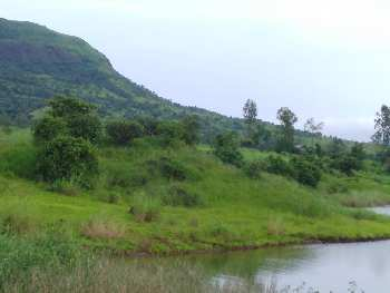 ID 139/01 Water touch land 13 acre near Pune