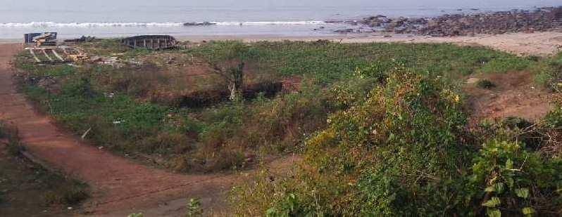 ID 113/50 Sea View property 80 acres single lot