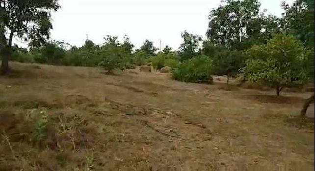 ID 125/3 Land fr resort at Amba Ghat Kolhapur