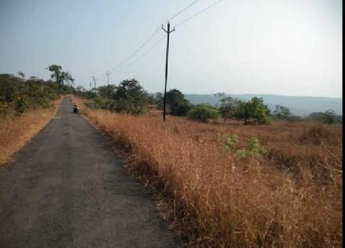 ID 147/1 Farm Land 50 Acres In Taluka Tala