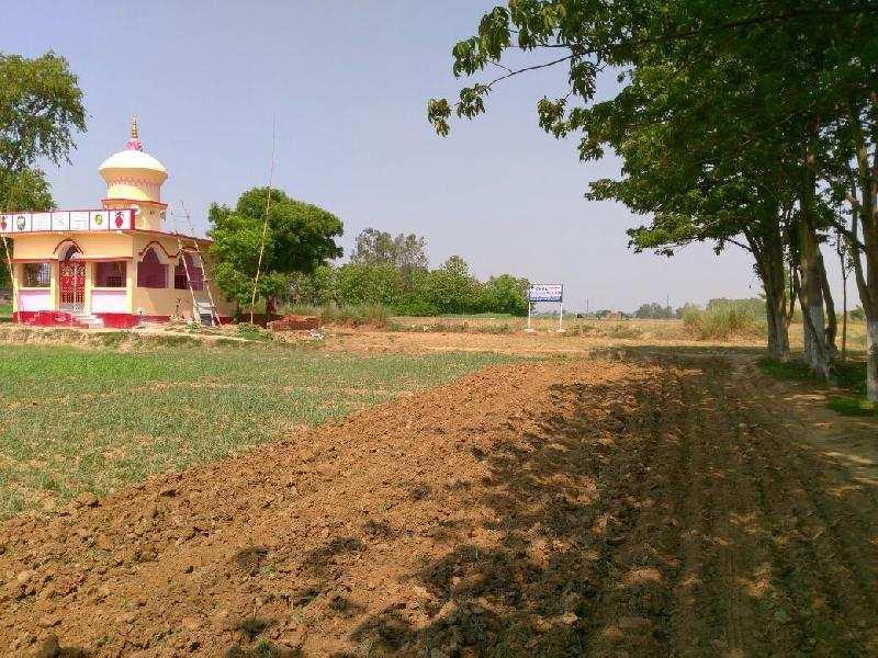 Residential Plot for Sale in Phulwari Sharif, Patna
