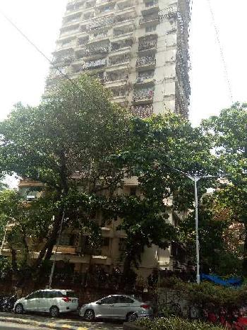 2 BHK Flats & Apartments for Sale in Peddar Road, Mumbai