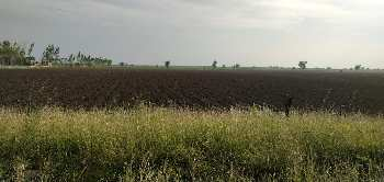 Agricultural/Farm Land for Sale in Lambhvel Road, Anand