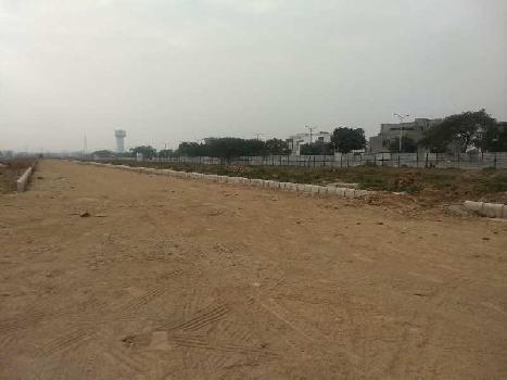 Residential Land for Sale in TDI Residential Plot, Sector-117 Mohali