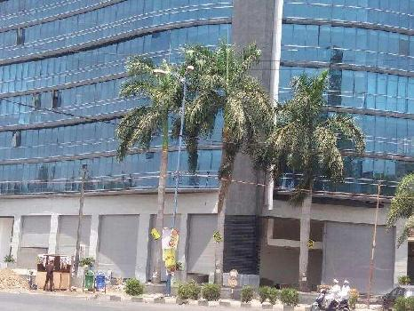 Commercial Showrooms for Lease in South Tukoganj, Indore
