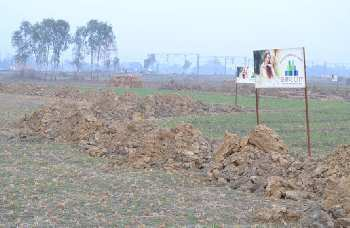 Residential Plot For Sale In Amleshwar, Raipur