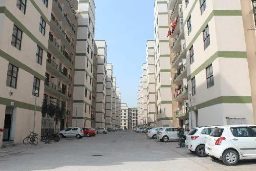 3bhk flat for rent on vip road zirakpur