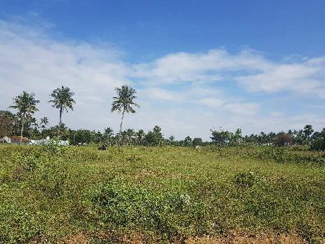 Agriculture Land For Sale In Coimbatore