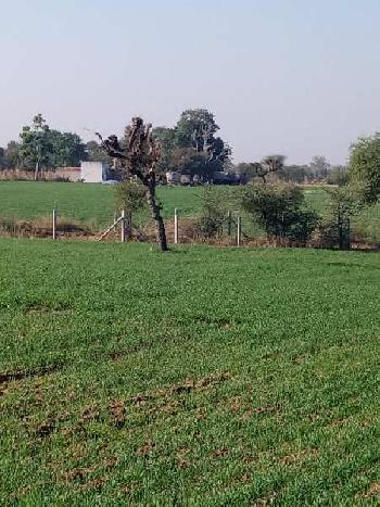 Agriculture land sell in parbatsar nagaur