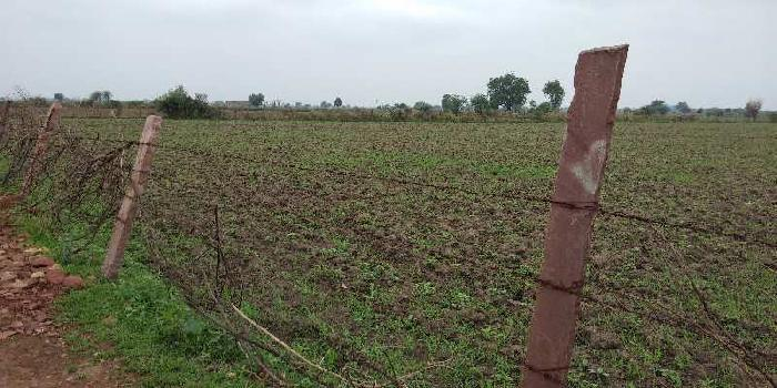 Agricultural/Farm Land for Sale in Hattipura, Bundi