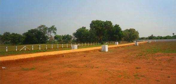 Residential Plot For Sale In Bhandara