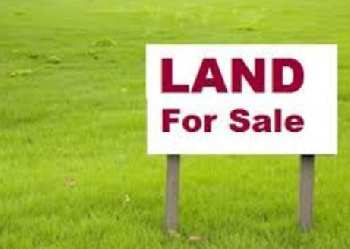 5 katta Land Sale in Asansol