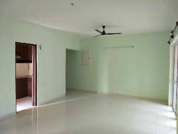 3 Bhk Flat Sale in S.N. Roy Road ,New Alipore
