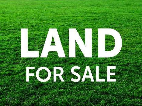 Land Sale in Rabindra Nagar