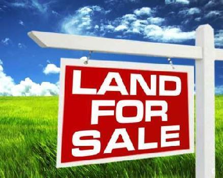 2 Katta Land sale in Gopalpur Area