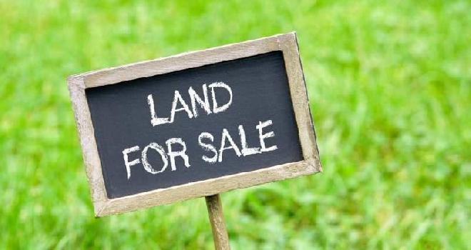 5 Katta land sale in Apcar Garden, Asansol