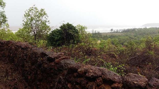 Agricultural Land For Sale In Ganpatipule, Ratnagiri