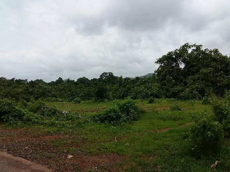 Agricultural Land For Sale In Sawantwadi, Sindhudurg