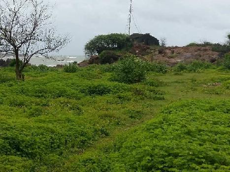 Agricultural/Farm Land for Sale in Malvan, Sindhudurg