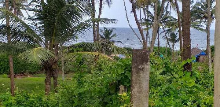Beach touch plot in best price
