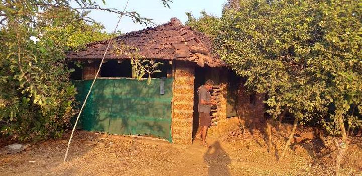 22 Acre Agricultural/Farm Land for Sale in Sawantwadi, Sindhudurg