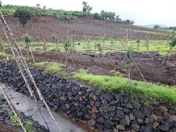 Farm House Plot For Sale In Trimbak, Nashik