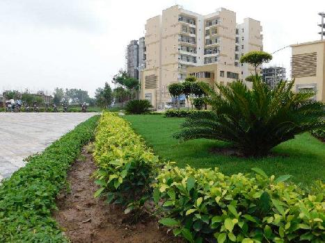 2 BHK Flats & Apartments for Sale in Highland Marg, Zirakpur
