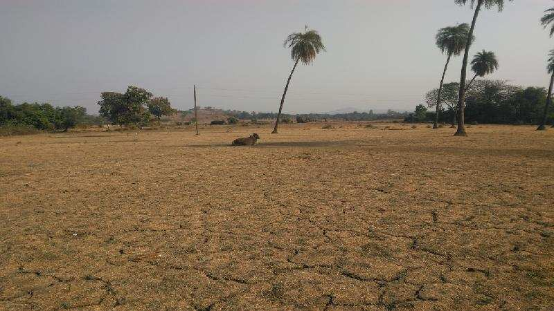 Farm Land for Sale in Sarigam, Valsad