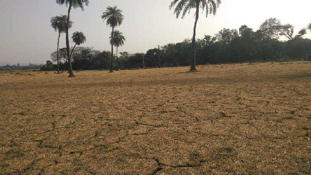 Farm Land for Sale in Sarigam, Valsad
