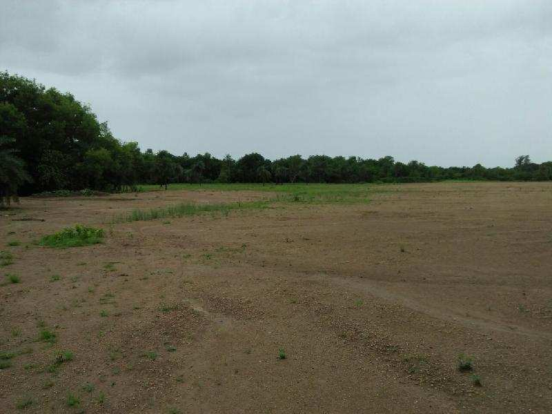 Agricultural/Farm Land for Sale in Chharwada, Vapi