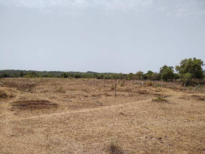 Industrial NA Plot for SALE in Vapi GIDC, Gujarat.