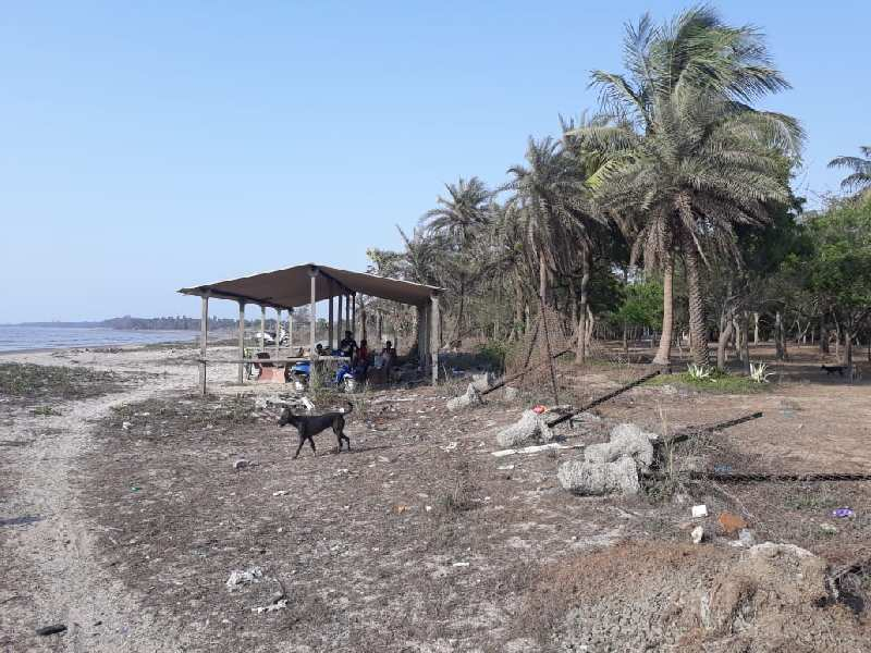 3000 sq. mtrs. Sea Facing plot for SALE in Umbergaon.