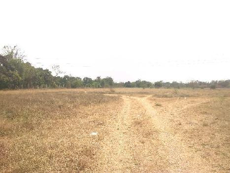 Industrial NA Land for SALE at Umbergaon - Sanjan