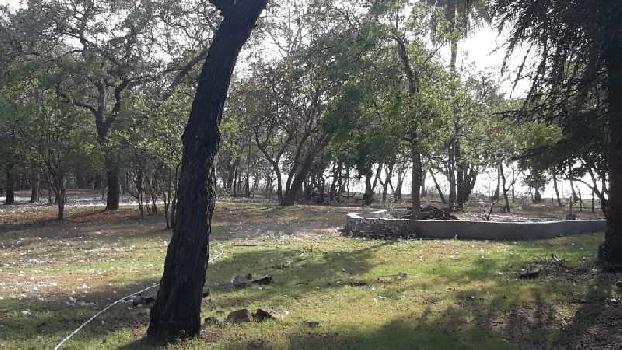 Agriculture Land for SALE near Umbergaon Sanjan