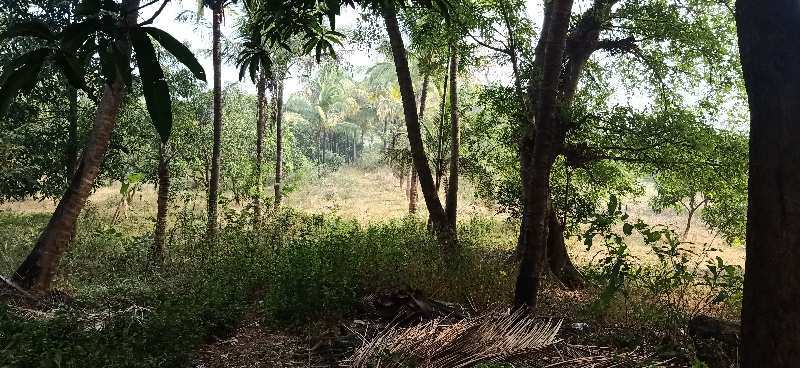 22 Acers Agriculture Land for SALE near Umbergaon