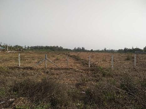 55 Acers Agriculture Plot for SALE near Umbergaon
