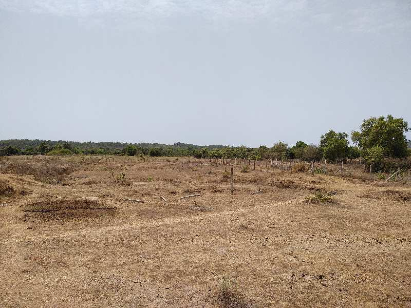 70 Acers Agriculture Plot for SALE near Umbergaon