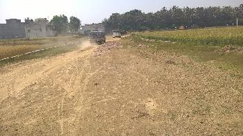 Residential Plot for Sale in Rohania, Varanasi